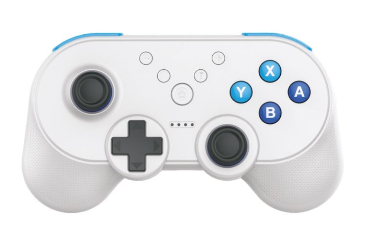 Controller für Nintendo Switch